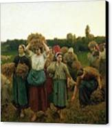 Calling In The Gleaners Canvas Print by Jules Breton
