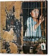 Captive Canvas Print by Teresa Carter