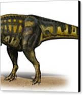 Carcharodontosaurus Iguidensis Canvas Print by Sergey Krasovskiy