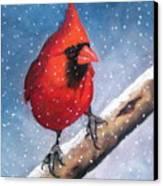 Cardinal In Winter Canvas Print by Joyce Geleynse