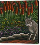 Cat - Bob The Bobcat Canvas Print by Carol Wilson
