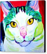 Cat - Zooey Canvas Print by Alicia VanNoy Call