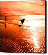 Catch Me If You Can Canvas Print by Suni Roveto