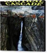 Central Cascade Bridge View Canvas Print by InTheSane DotCom