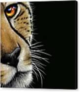 Cheetah Canvas Print by Jurek Zamoyski