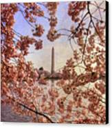 Cherry Blossoms And The Washington Monument Canvas Print by Lois Bryan