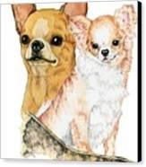 Chihuahuas Canvas Print by Kathleen Sepulveda