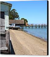 China Camp In Marin Ca Canvas Print by Wingsdomain Art and Photography