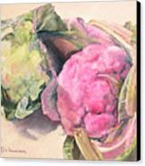 Choux Canvas Print by Muriel Dolemieux