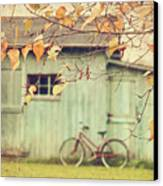 Closeup Of Leaves With Old Barn In Background Canvas Print by Sandra Cunningham