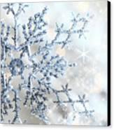 Closeup Of Snowflake Canvas Print by Sandra Cunningham