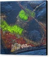 Coastal Floor At Low Tide Canvas Print by Heiko Koehrer-Wagner