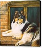 Collie On The Hearth Canvas Print by Karen Coombes