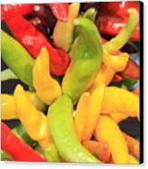 Colorful Chili Peppers  Canvas Print by Carol Groenen