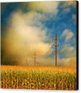Corn Field At Sunrise Canvas Print by Photo by Jim Norris