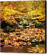Creek In The Woods Canvas Print by Kathy Jennings