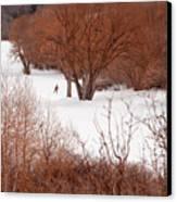 Crosscountry Skier Canvas Print by Utah Images