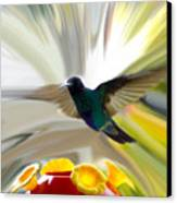 Cuenca Hummingbird Series 1 Canvas Print by Al Bourassa