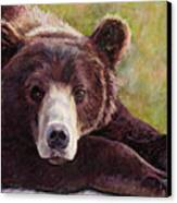 Da Bear Canvas Print by Billie Colson
