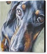 Dachshund Black And Tan Canvas Print by Lee Ann Shepard