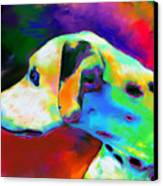 Dalmatian Dog Portrait Canvas Print by Svetlana Novikova