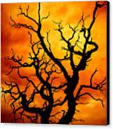 Dead Tree Canvas Print by Meirion Matthias