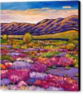Desert In Bloom Canvas Print by Johnathan Harris