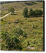 Devils Den From Little Round Top Canvas Print by David Bearden
