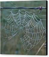Dew On The Web Canvas Print by Douglas Barnett
