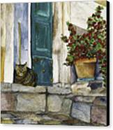 Di Gatto Canvas Print by Barb Pearson