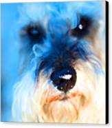 Dog 2 . Photo Artwork Canvas Print by Wingsdomain Art and Photography