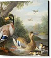 Ducks In A River Landscape Canvas Print by Jakob Bogdany