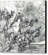 Dunbar Cave Clarksville Tn Canvas Print by Joy Neasley