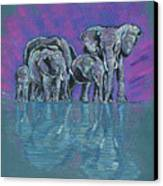 Elephant Family Canvas Print by John Keaton