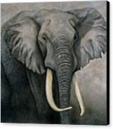 Elephant Canvas Print by Lawrence Supino