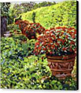 English Flower Pots Canvas Print by David Lloyd Glover