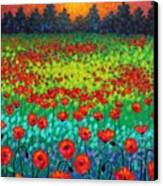 Evening Poppies Canvas Print by John  Nolan