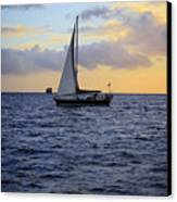 Evening Sail Canvas Print by Cheryl Young