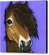 Exmoor Pony  Canvas Print by Leanne Wilkes