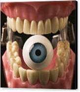 Eye Held By Teeth Canvas Print by Garry Gay