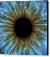 Eye, Iris Canvas Print by Pasieka