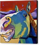 Eye To Eye Canvas Print by Pat Saunders-White