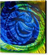 Eyeing A Storm Canvas Print by Omaste Witkowski