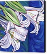 Faith Lily Two Canvas Print by Dawn Thrasher