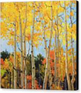Fall Aspen Santa Fe Canvas Print by Gary Kim