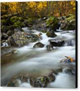 Fall Surge Canvas Print by Mike  Dawson
