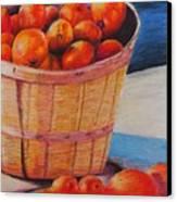 Farmers Market Produce Canvas Print by Nadine Rippelmeyer