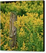 Fence Post7139 Canvas Print by Michael Peychich