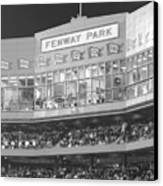 Fenway Park Canvas Print by Lauri Novak