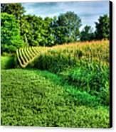 Field Of Dreams Iv Canvas Print by Steven Ainsworth